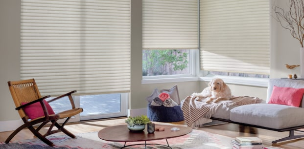 Treatments over large windows in living area